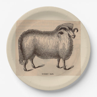 19th century print Dorset ram print Paper Plate