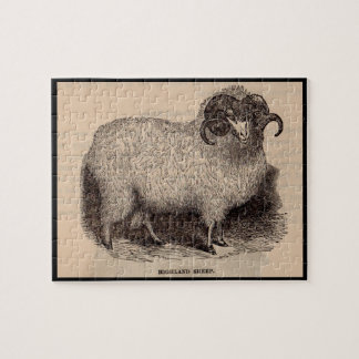 19th century print Highland sheep Jigsaw Puzzle