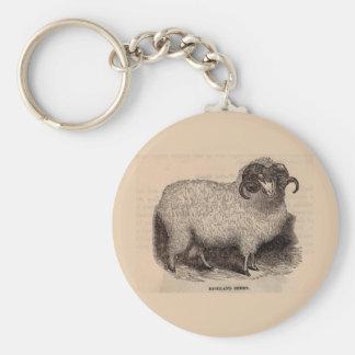 19th century print Highland sheep Keychain