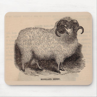 19th century print Highland sheep Mouse Pad