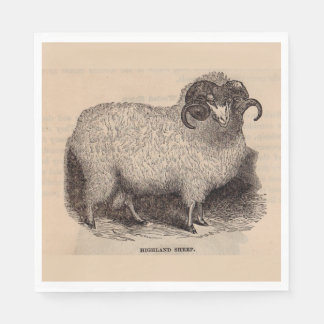 19th century print Highland sheep Paper Napkin
