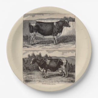 19th century print Holstein bull and heifer 9 Inch Paper Plate