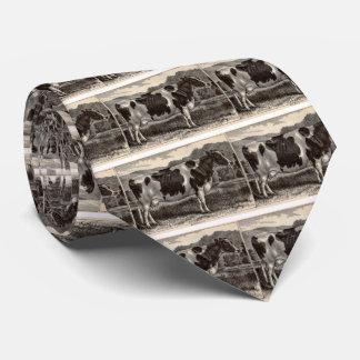 19th century print Holstein cow Tie
