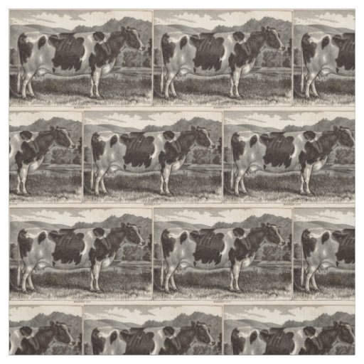 19th century print Holstein heifer Fabric
