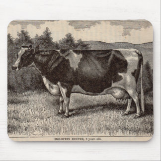 19th century print Holstein heifer Mouse Pad