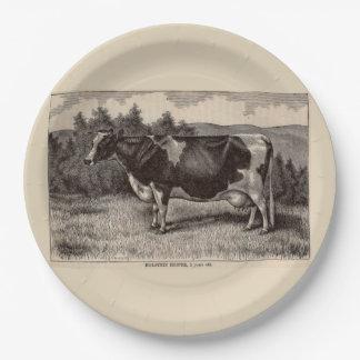 19th century print Holstein heifer Paper Plate