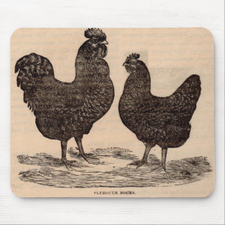 19th century print Plymouth Rock hen and rooster Mouse Pad