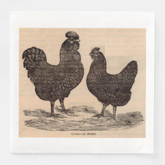 19th century print Plymouth Rock hen and rooster Paper Dinner Napkin