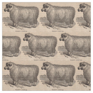 19th century print yearling Cotswold sheep Fabric
