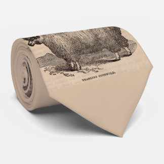 19th century print yearling Cotswold sheep Tie