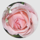 "1 1/2"" Round Stickers (20 count) - Pale Pink Rose"