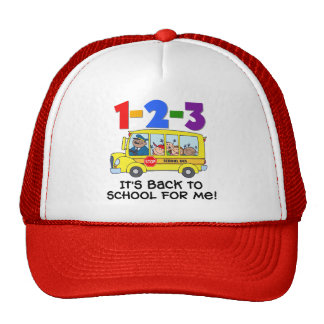 1-2-3 Back to School Hats