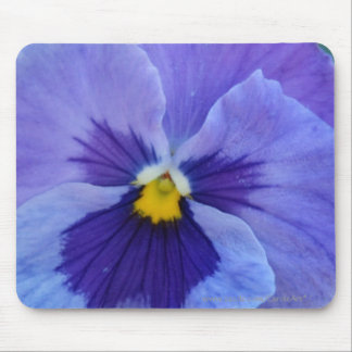 1 Blue Beauty Pansy Mouse Pad