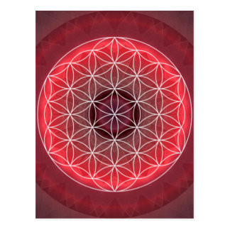 1 Chakra Flower of Life red Postcard