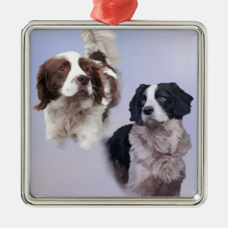 1 PRINT A4 Two dogs blue 19 x 13.jpg Silver-Colored Square Ornament