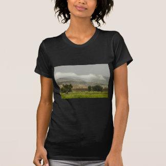 1st Day of Rain Great Colorado Flood T-Shirt