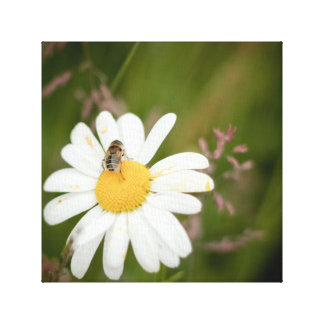1x1 Collection, Flower with Honey Bee Canvas Print