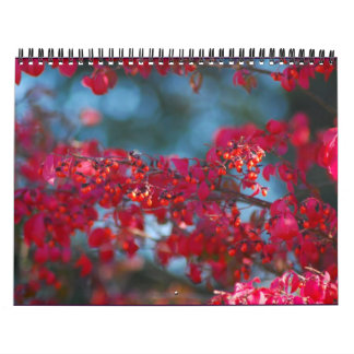 2007 Photo Calendar - Customized