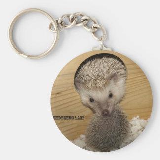 20081206_0055, Moving Hedgehog Basic Round Button Keychain