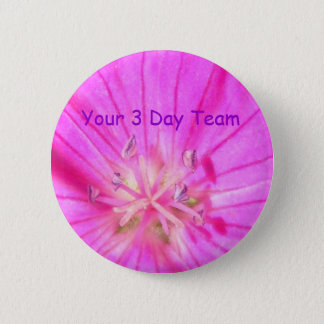2009-1030, Your 3 Day Team button