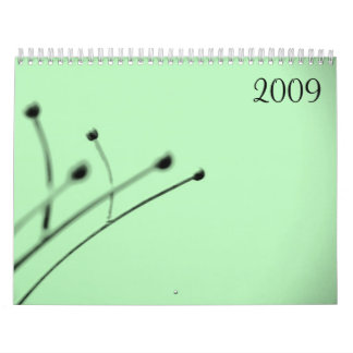2009 by Little Gray Pixel Wall Calendars