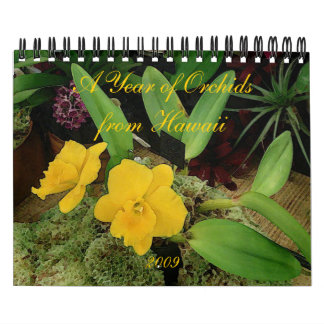 2009 Calendar: A Year of Orchids from Hawaii Calendar