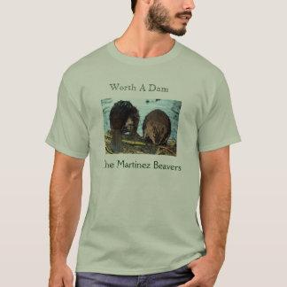 2009 Tshirt Worth A Dam