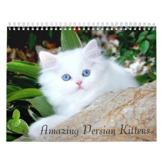 2010 Cozy Kittens Calendar - Customized