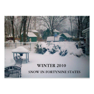 2010, SNOW IN FORTYNINE STATES poster