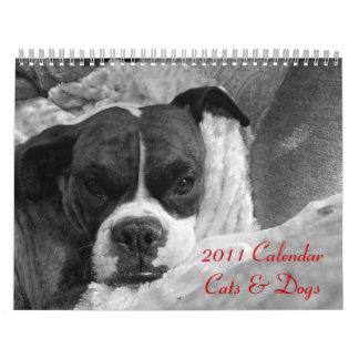 2011 Pet Calendar: Cats & Dogs Wall Calendars