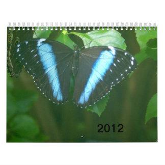 2012 Butterflies Wall Calendars