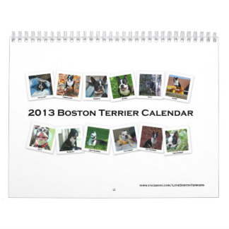 2013 Boston Terrier Calendar