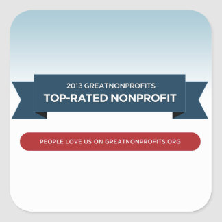 2013 GreatNonprofits Top-Rated Award Stickers