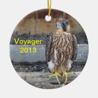 2013 Voyager Ornament