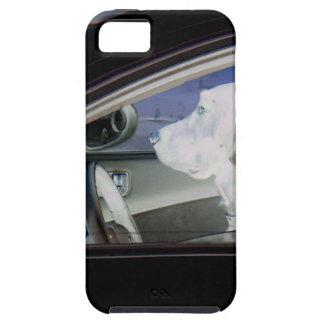 20141018 150853b.JPG iPhone 5 Covers
