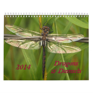 2014 Dragonflies and Damselflies Calendar