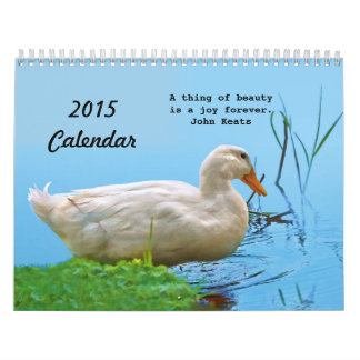 2015 Calendar of Beautiful Things