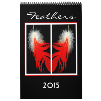 2015 Calendar of Bird feathers