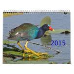 2015 North American Bird Calendar