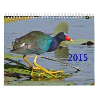 2015 North American Bird Calendar