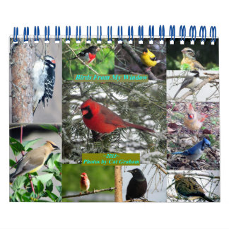 2016 Bird Calendar From My Window