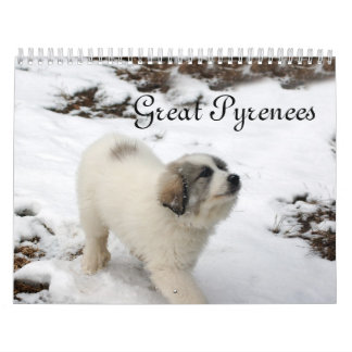 2016 Great Pyrenees Puppy Calendar