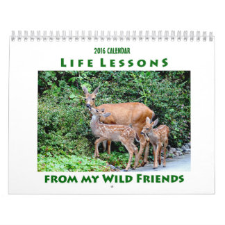 2016 Life Lessons Animal Calendar