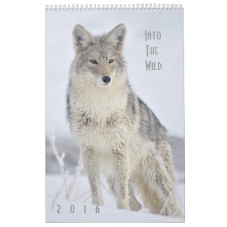 2016 Wildlife Wall Calendar by Steven Holt
