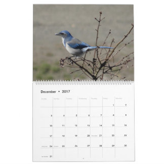 2017  Birds of North America Calendar