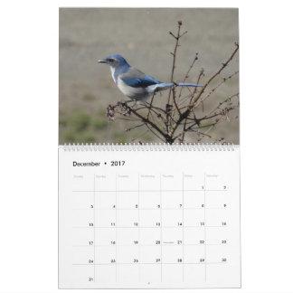 2017  Birds of North America Wall Calendar