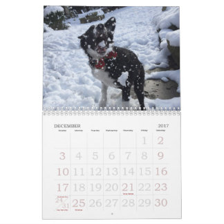 2017 Border Collie Calendar