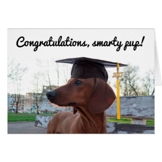 2017 Graduation Cap & Charm Dog Dachshund Smarty Card