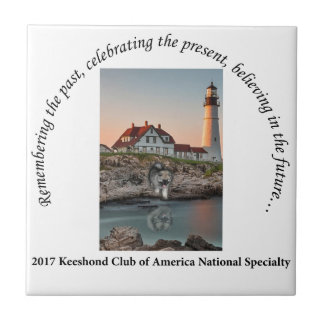 2017 National Logo Option #1 Tile