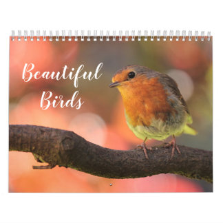 2018 Beautiful Birds Calendar